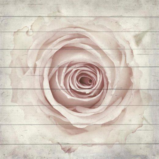 Home affaire Holzbild »Rose von oben«, 40/40 cm