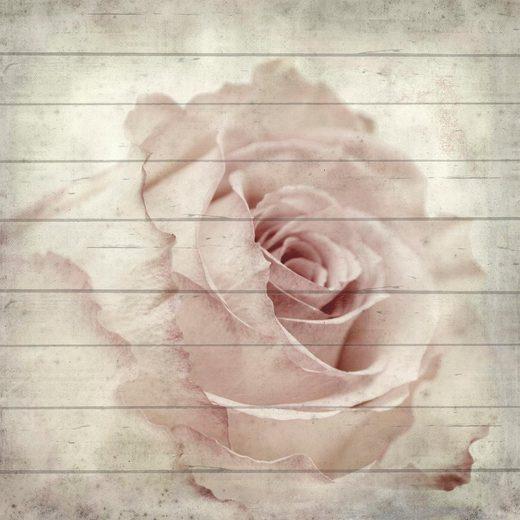 Home affaire Holzbild »Rose seitliche«, 40/40 cm