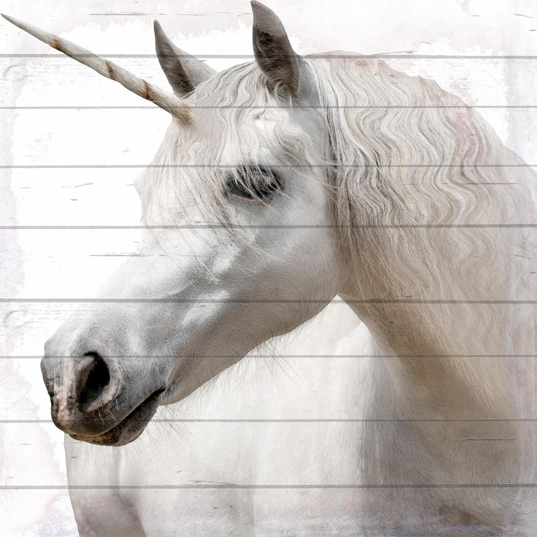 Home affaire Holzbild »Einhorn/Pferd«, 40/40 cm