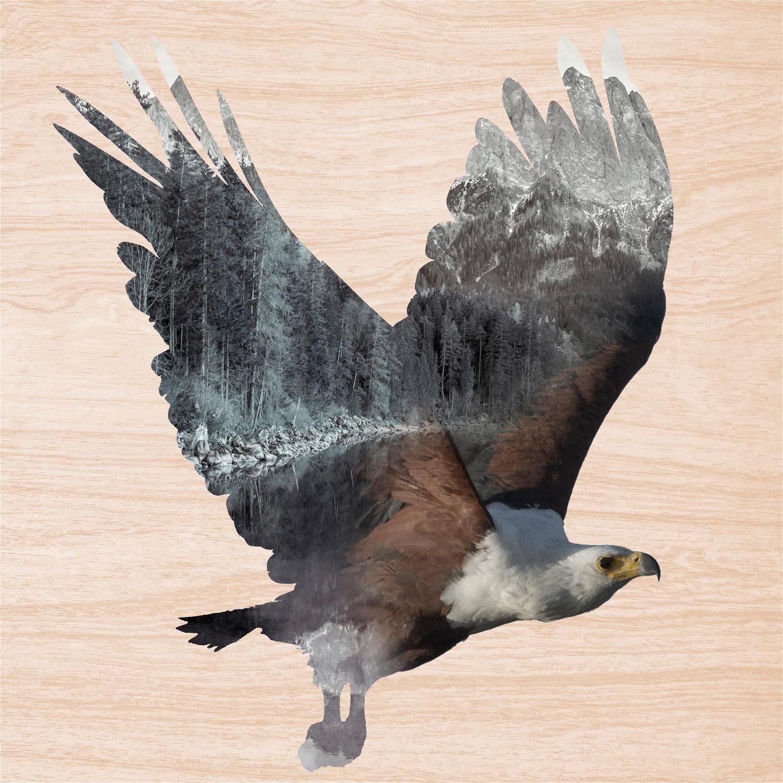 Home affaire Holzbild »Adler«, Tiermotiv, 50/50 cm, eckig