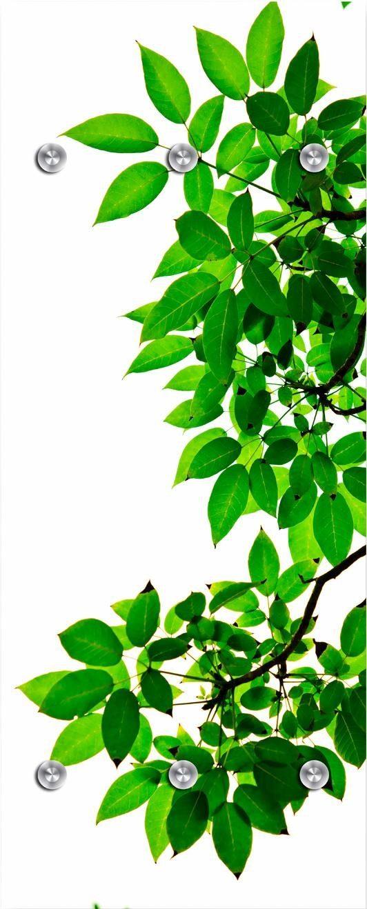 Garderobe »Zweige mit Blättern« 50/125 cm