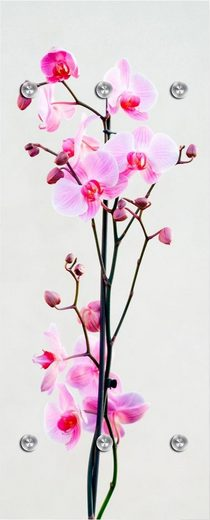 Garderobenpaneel »Orchidee«