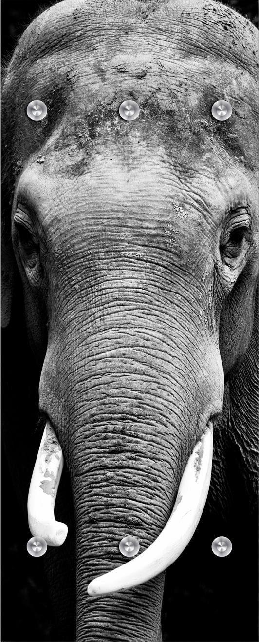 Garderobe »Elefant« 50/125 cm