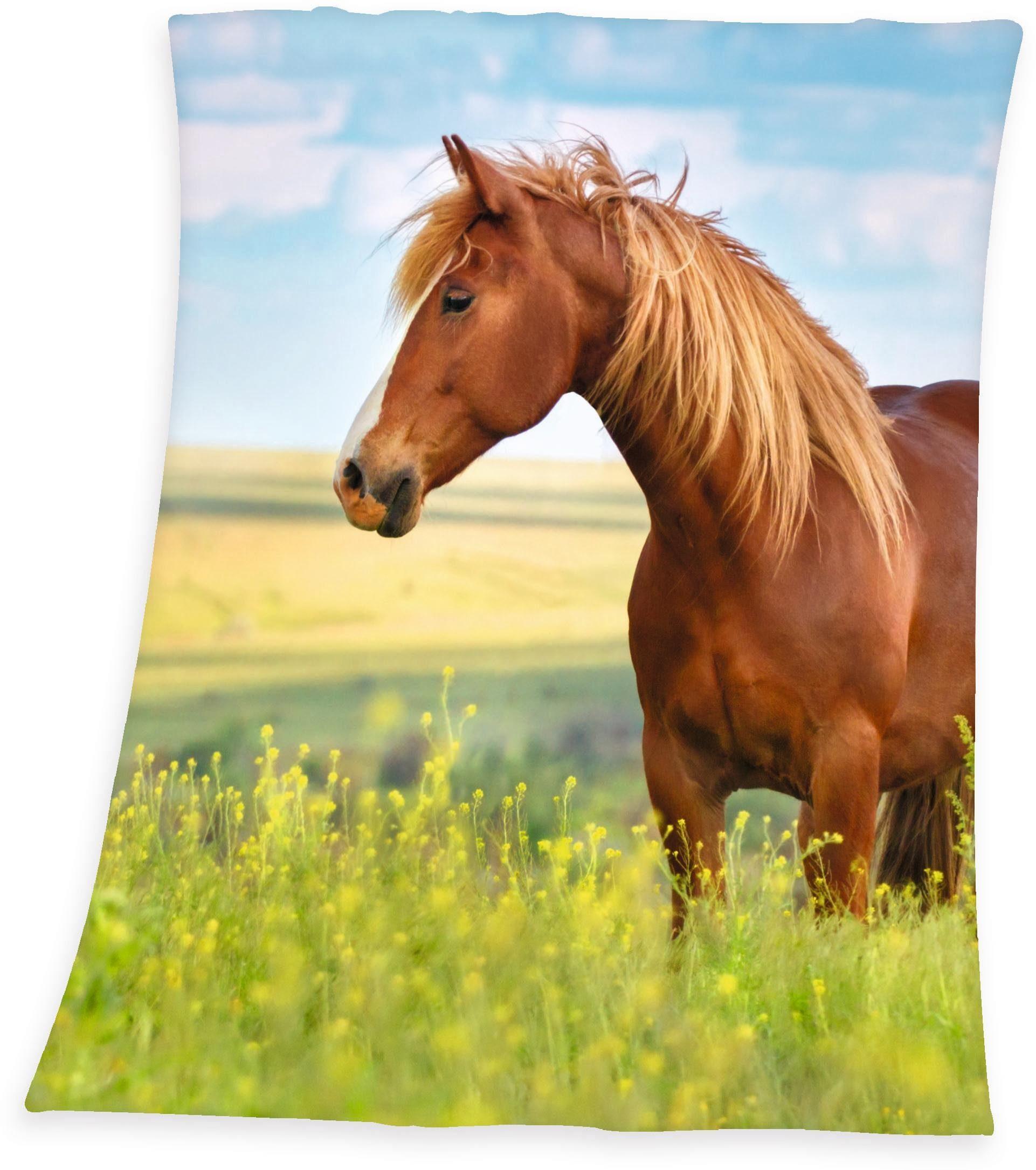 Kinderdecke »Pferd«, Young Collection, mit Motiv