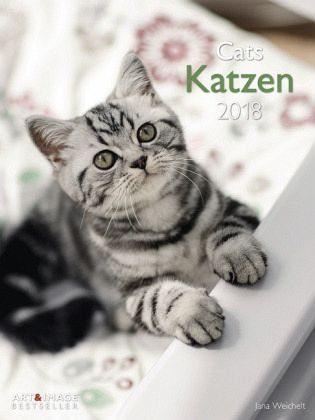 Kalender »Katzen 2018 Posterkalender«