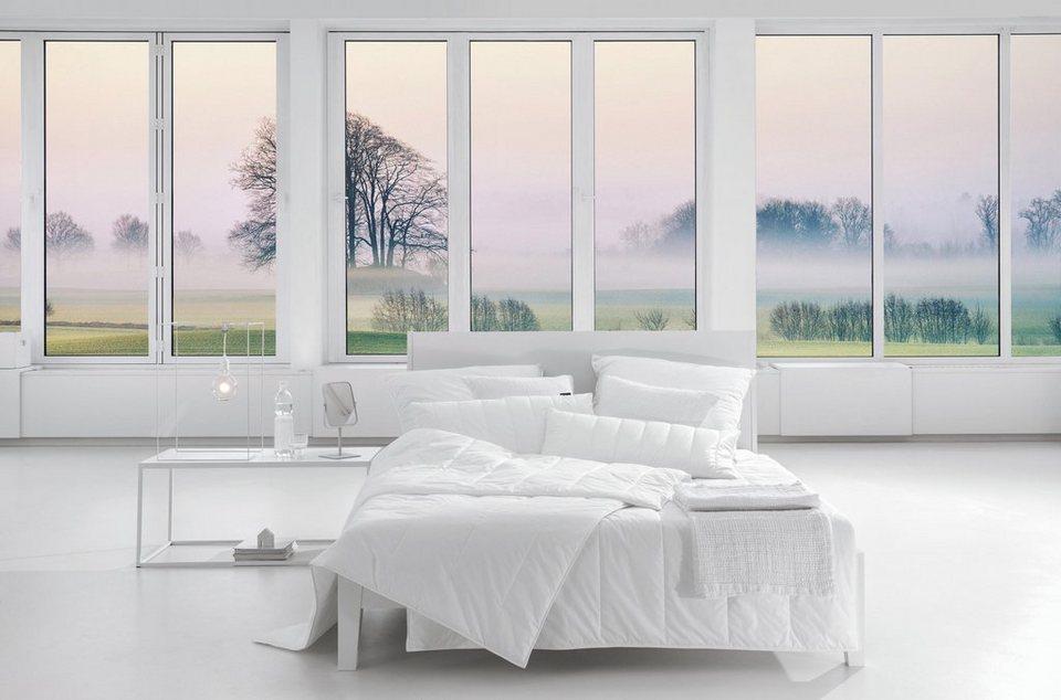 4 jahreszeitenbett allergoprotect centa star normal 1 tlg online kaufen otto. Black Bedroom Furniture Sets. Home Design Ideas