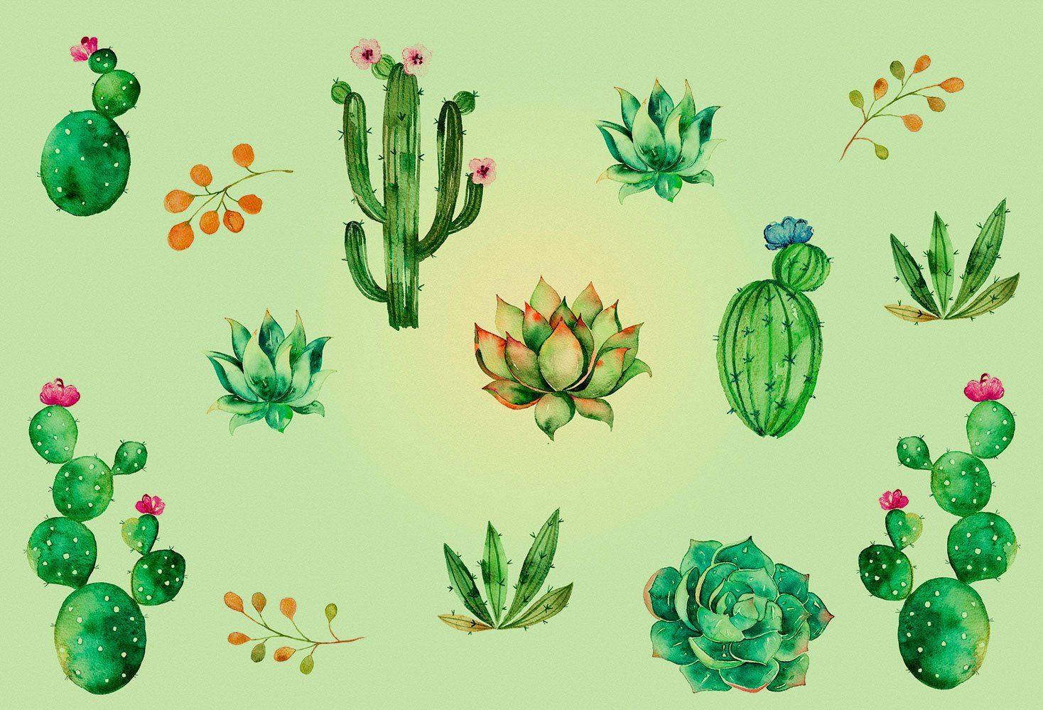 IDEALDECOR Fototapete »Cacti«