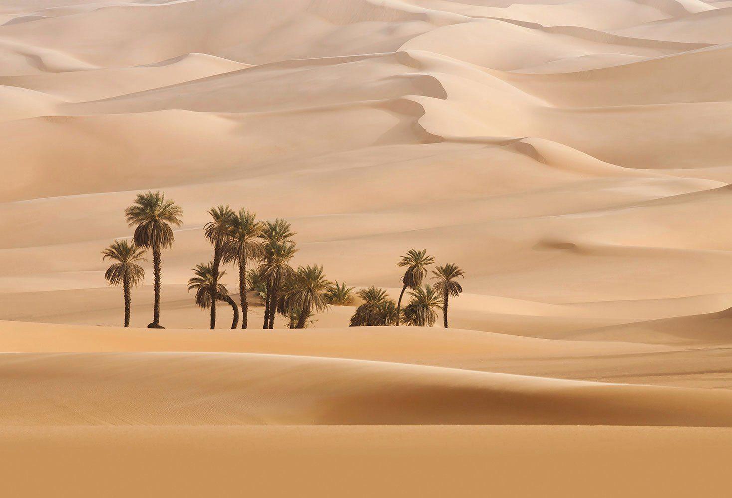 IDEALDECOR Fototapete »Dunes«