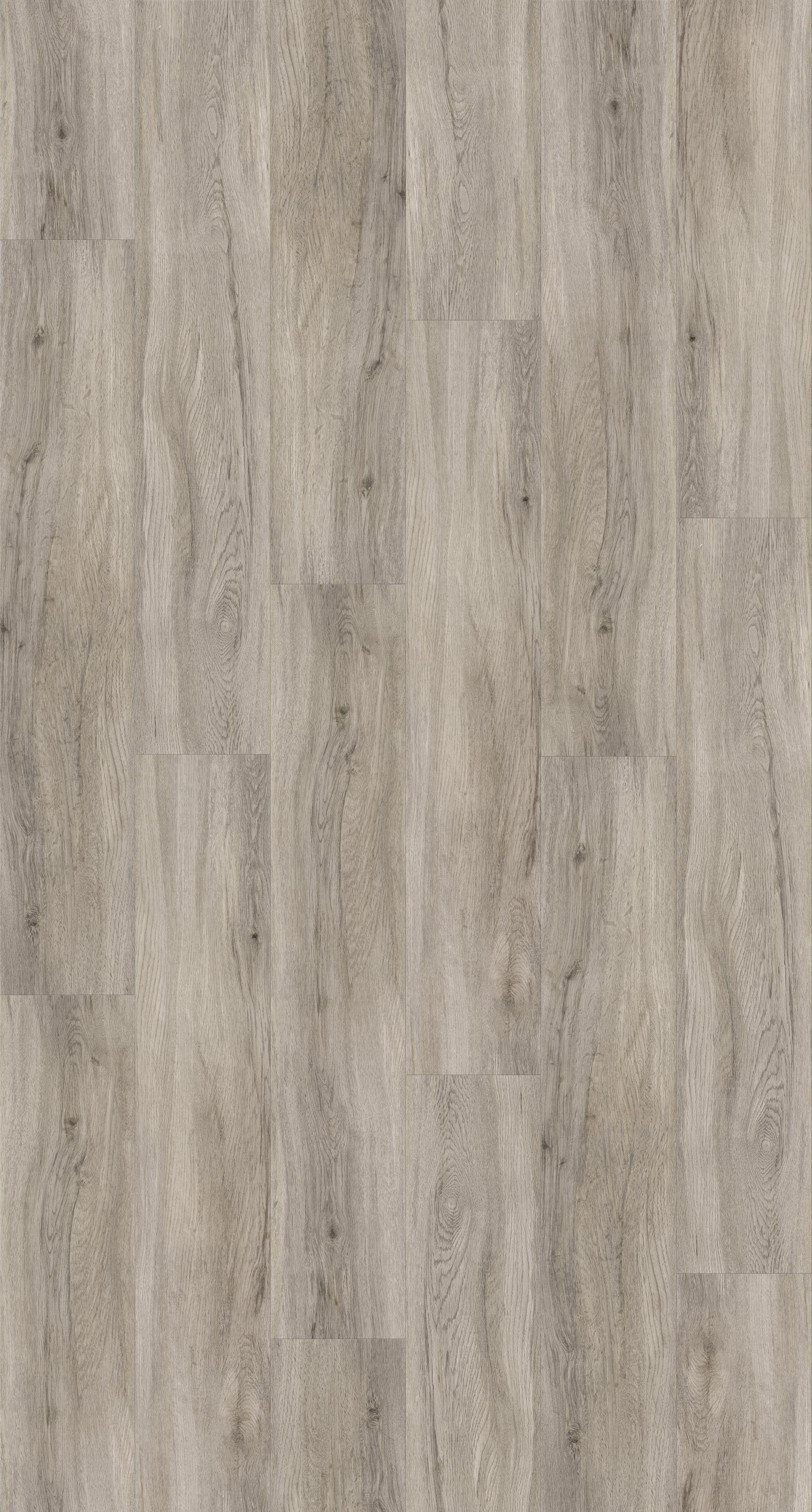 PARADOR Vinylboden »Basic 30«, Eiche pastellgrau Holzstruktur