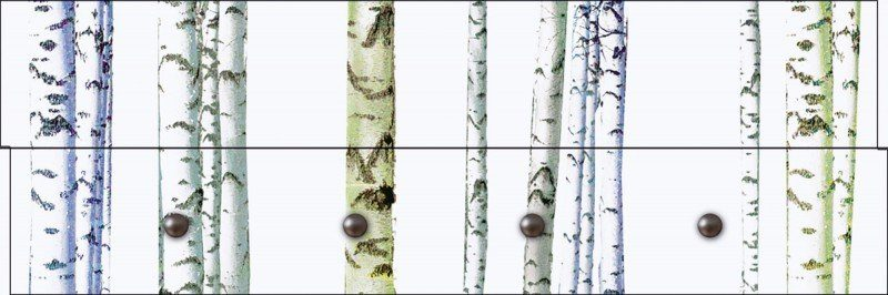 Artland Wandgarderobe »Jule: Abstrakte Birke«