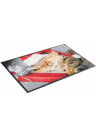 WASH+DRY BY KLEEN-TEX Durų kilimėlis »Sleeping Kitty« wash+d...