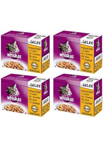 WHISKAS Rinkinys: šlapias katės maistas »Varia...