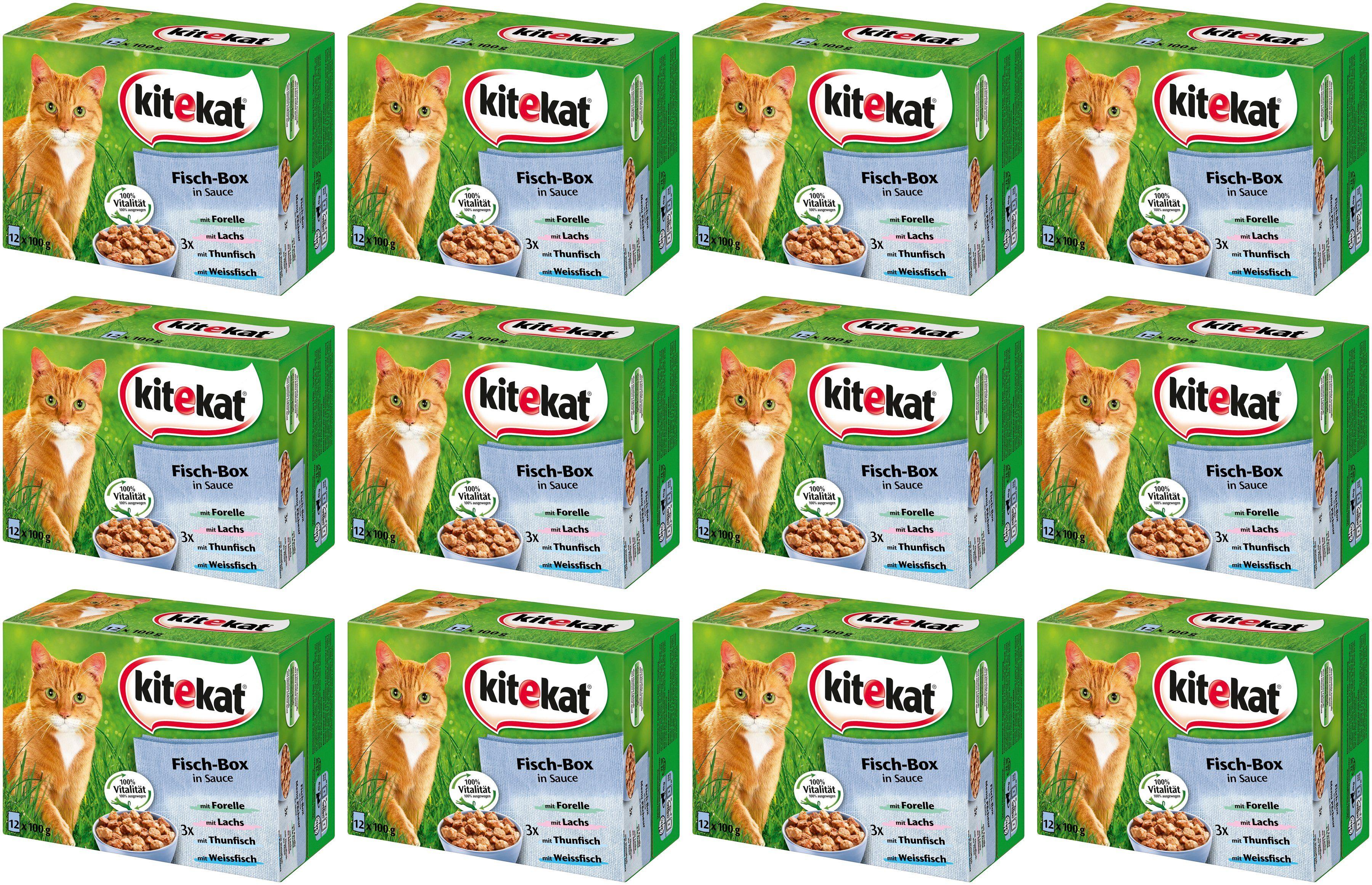 Kitekat Set: Katzennassfutter »Fisch-Box in Sauce«, 4 Pakete mit je 12 Beuteln á 100 g