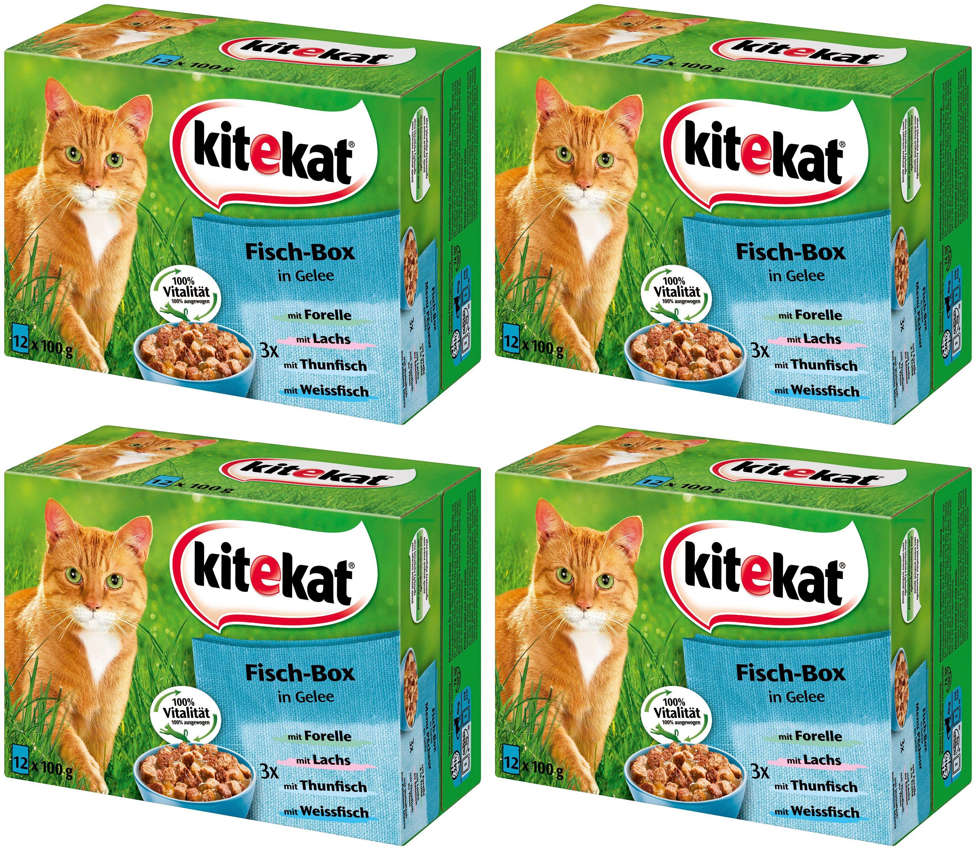Kitekat Set: Katzennassfutter »Fisch-Box in Gelee«, 4 Pakete mit je 12 Beuteln á 100 g