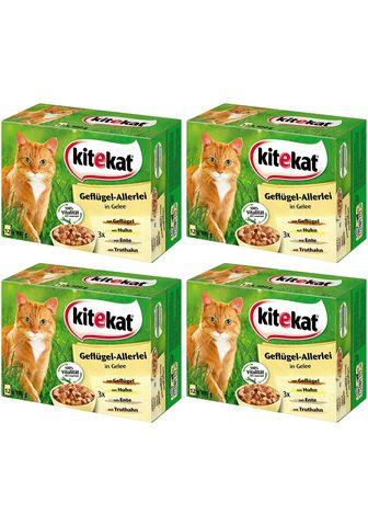 KITEKAT Rinkinys: šlapias katės maistas »Geflü...