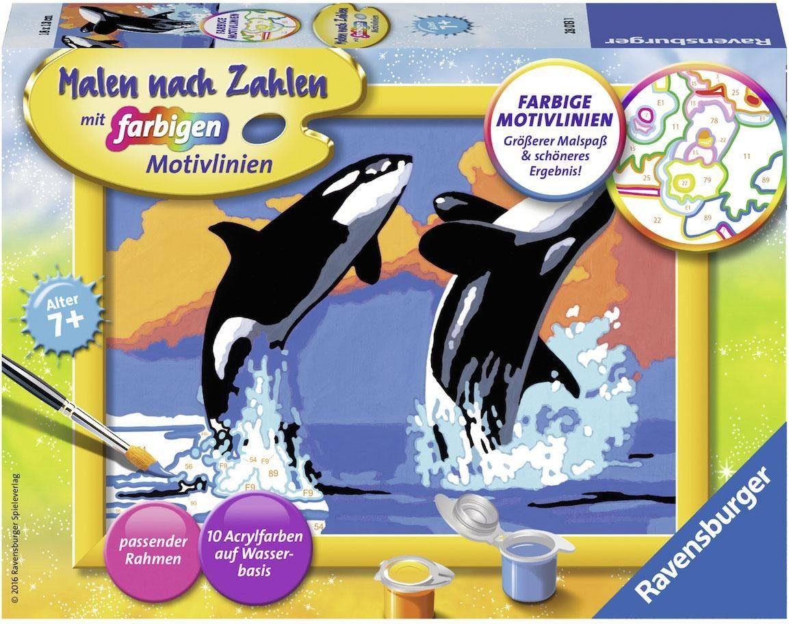 Ravensburger Malen nach Zahlen, »Verspielte Orcas«