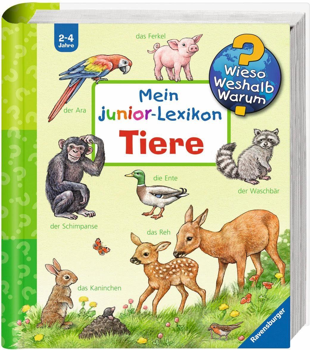 Ravensburger Kinderbuch, »Mein junior-Lexikon: Tiere / Wieso? Weshalb? Warum?«