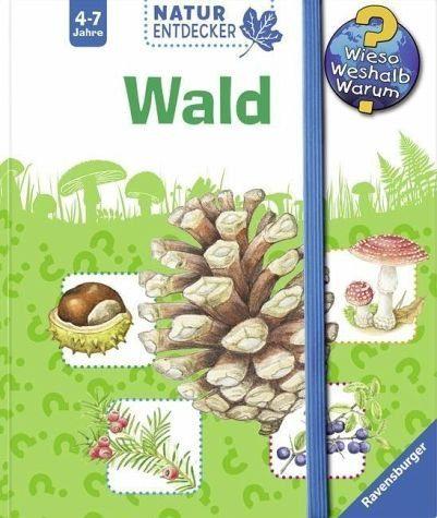 Broschiertes Buch »Wald / Wieso? Weshalb? Warum? Natur-Entdecker...«