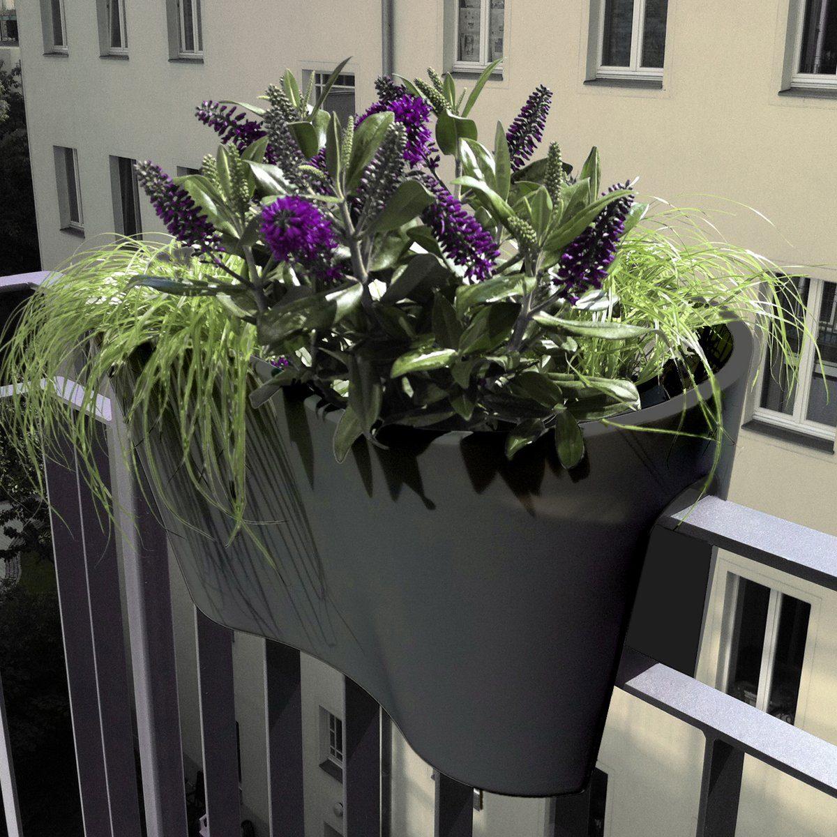 REPHORM rephorm Blumenkasten STECKLING DUO anthrazit