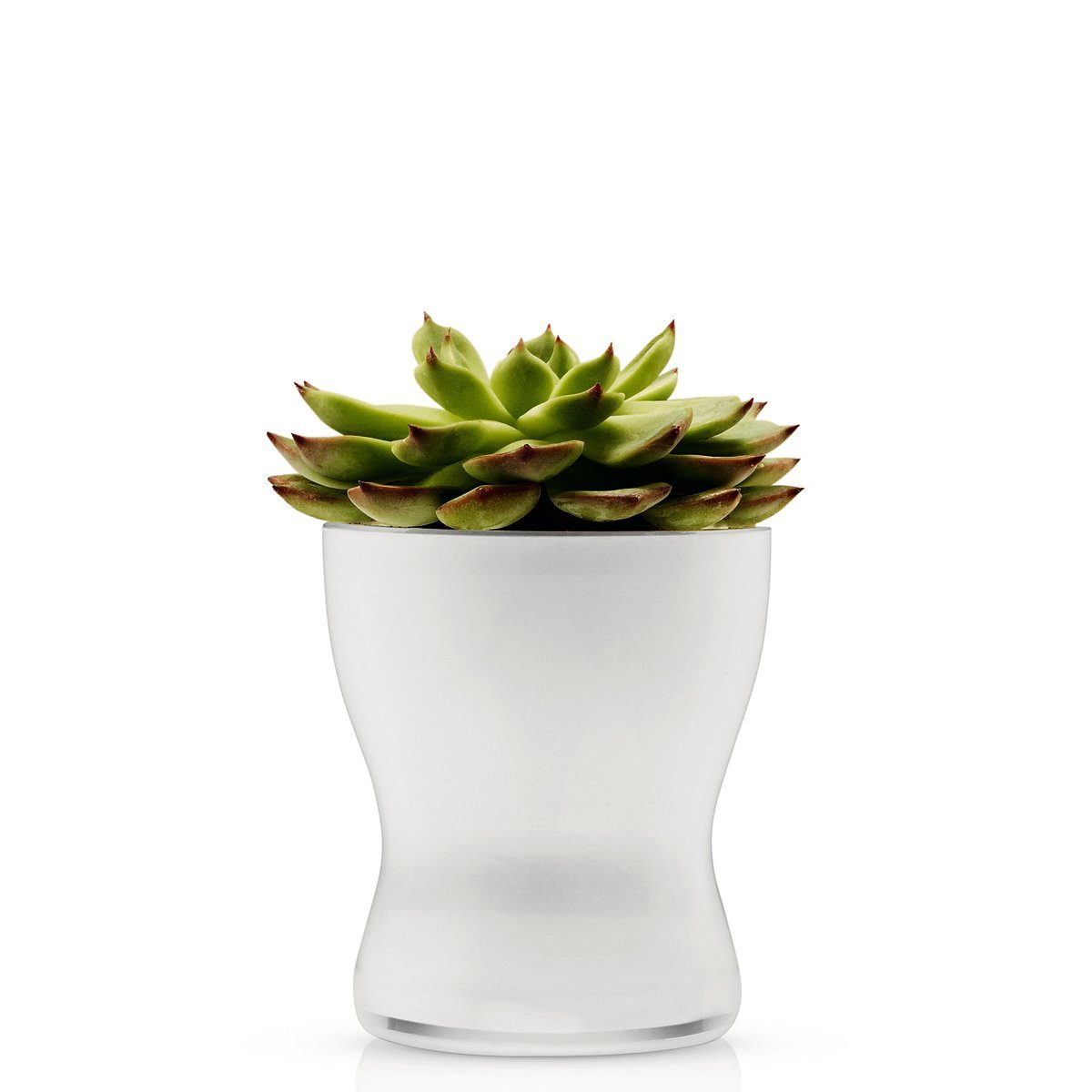 EVA SOLO Eva Solo Blumentopf aus Glas selbstbewässernd 11cm weiß