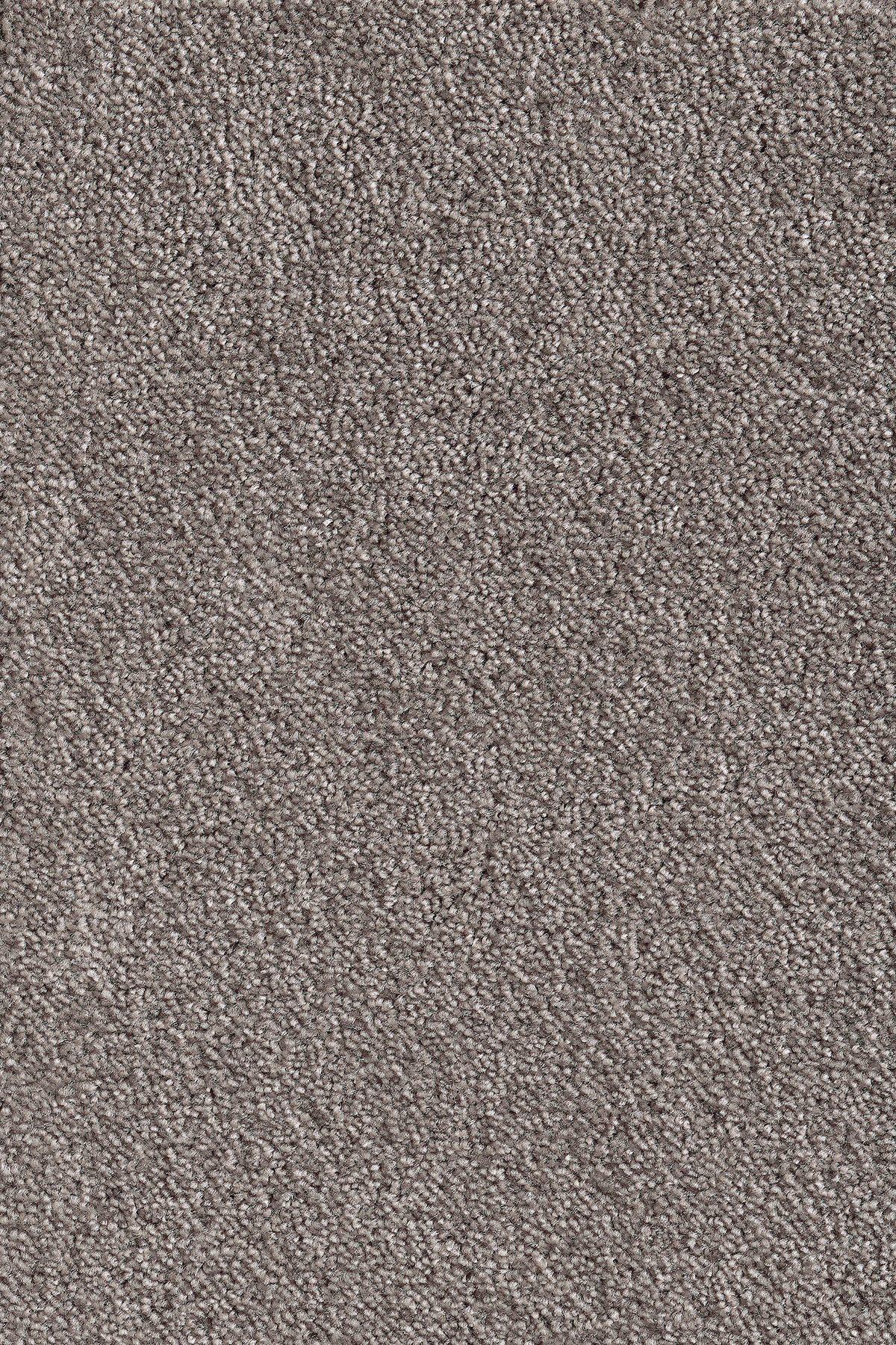 ANDIAMO Teppichboden »Levin schlammfarben«, Breite 500 cm