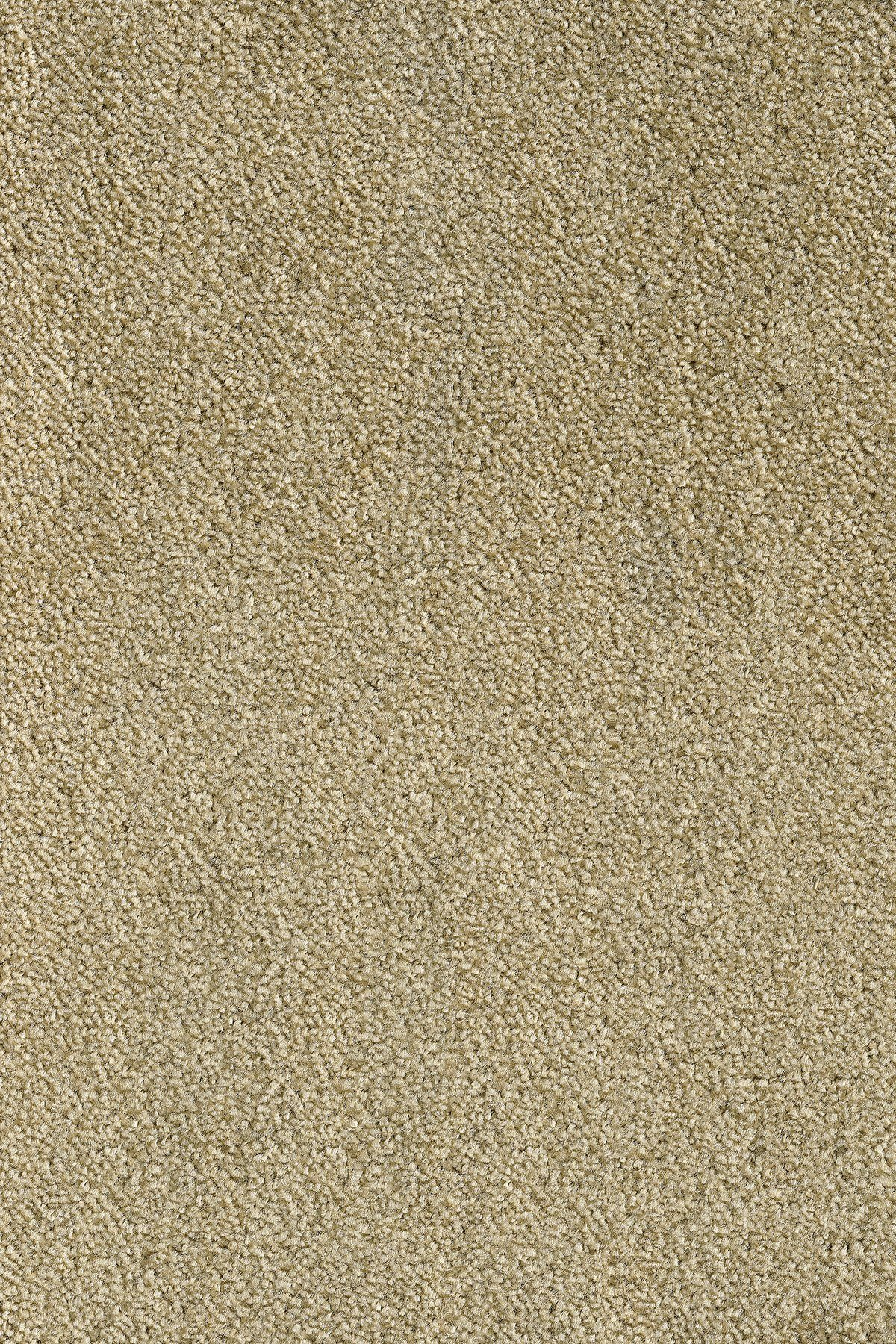 ANDIAMO Teppichboden »Levin grün«, Breite 500 cm