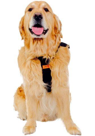HEIM RAC Hunde-Sicherheitsgurt