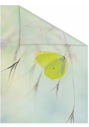 LICHTBLICK Dekoratyvinė plėvelė langui »Schmetter...