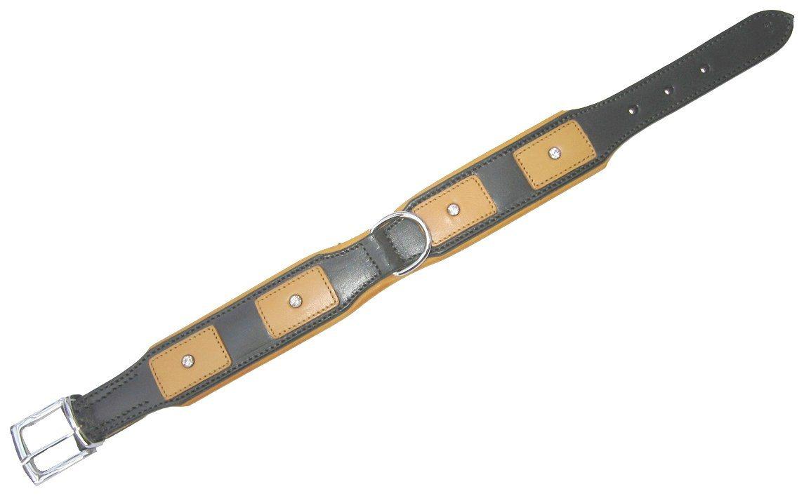 HEIM Hundehalsband »London«, grün, Länge: 45 - 65 cm - Preisvergleich