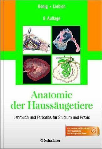 Gebundenes Buch »Anatomie der Haussäugetiere«