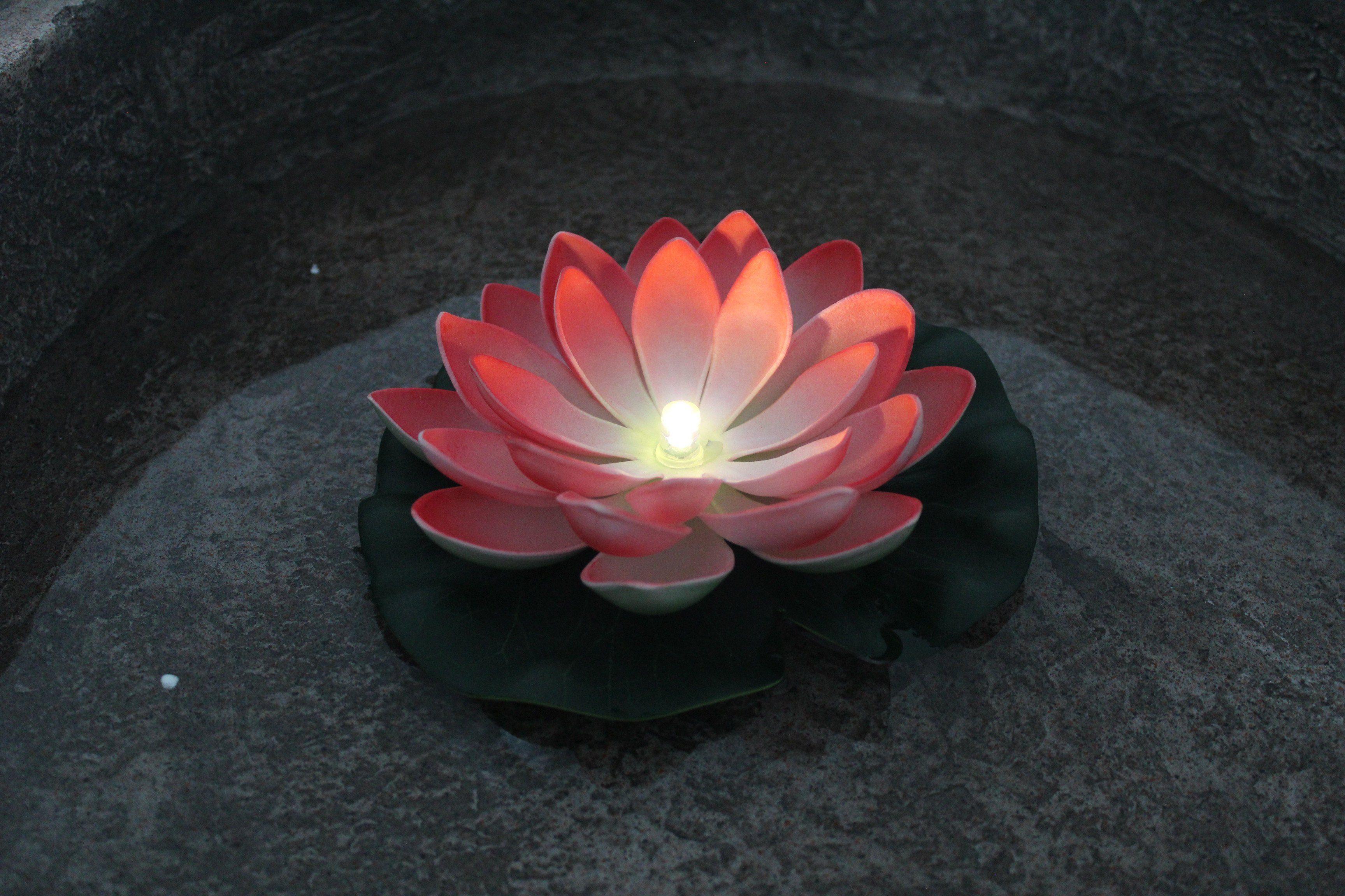 heine home Seerose beleuchtet mit 1 LED
