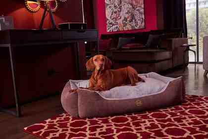 Hundebett, »Guido«, GMK Home & Living