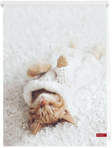 Seitenzugrollo »Klemmfix Digital Sleepy Cat«, LICHTBLICK, verdunkelnd, ohne Bohren, freihängend, bedruckt