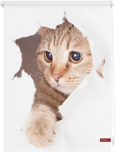 Seitenzugrollo »Klemmfix Digital Katze«, LICHTBLICK, verdunkelnd, ohne Bohren, freihängend, bedruckt