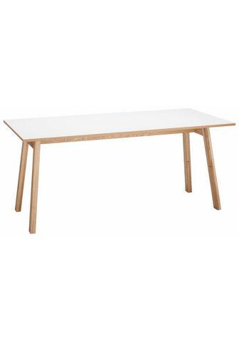 Rašomasis stalas »Trelle«