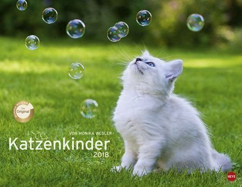 Kalender »Katzenkinder Posterkalender 2018«