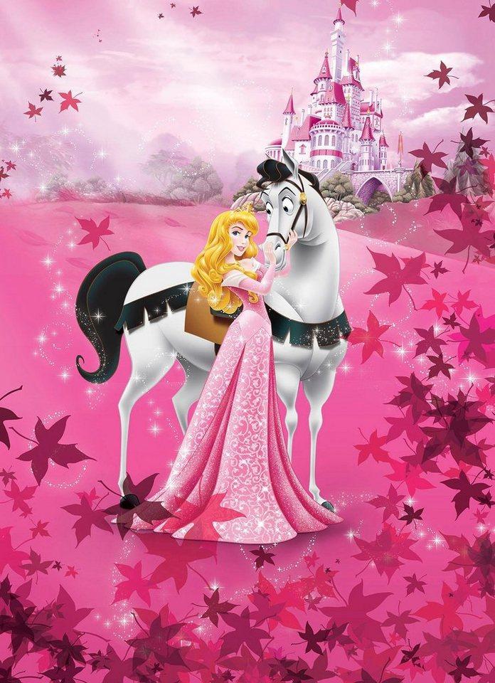 Komar Fototapete Disney Sleeping Beauty 184 254 Cm Online Kaufen Otto