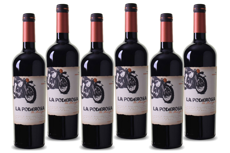 Rotwein aus Chile, 13,5 Vol.-%, 4,5 l »2016 Bodegas Viña Luis Felipe Edwards«