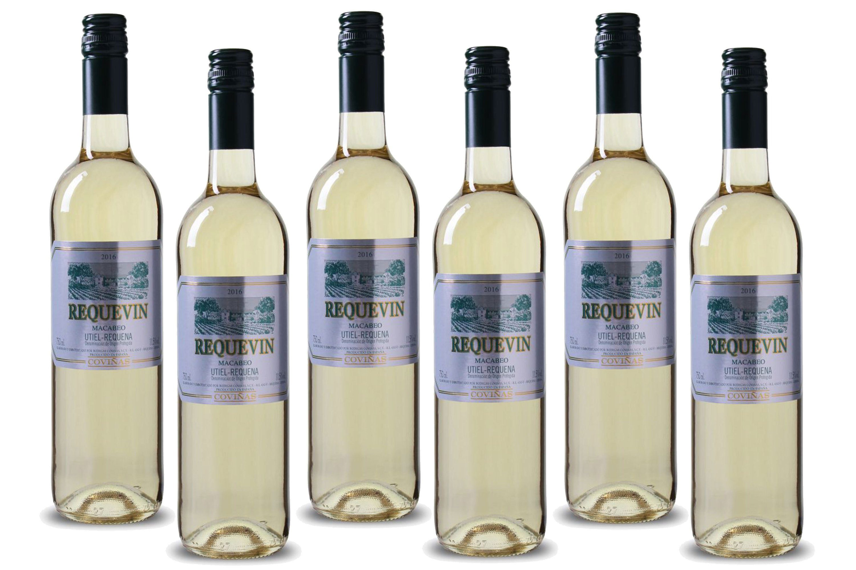 Weisswein aus Spanien, 11,5 Vol.-%, 4,5 l »2016 Bodegas Coviñas«
