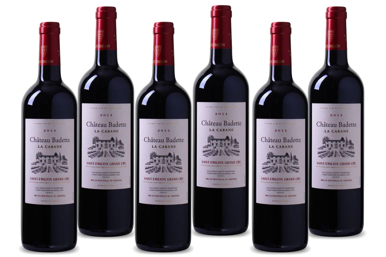 Rotwein aus Frankreich, 13,0 Vol.-%, 4,5 l »2014 Château Badette«