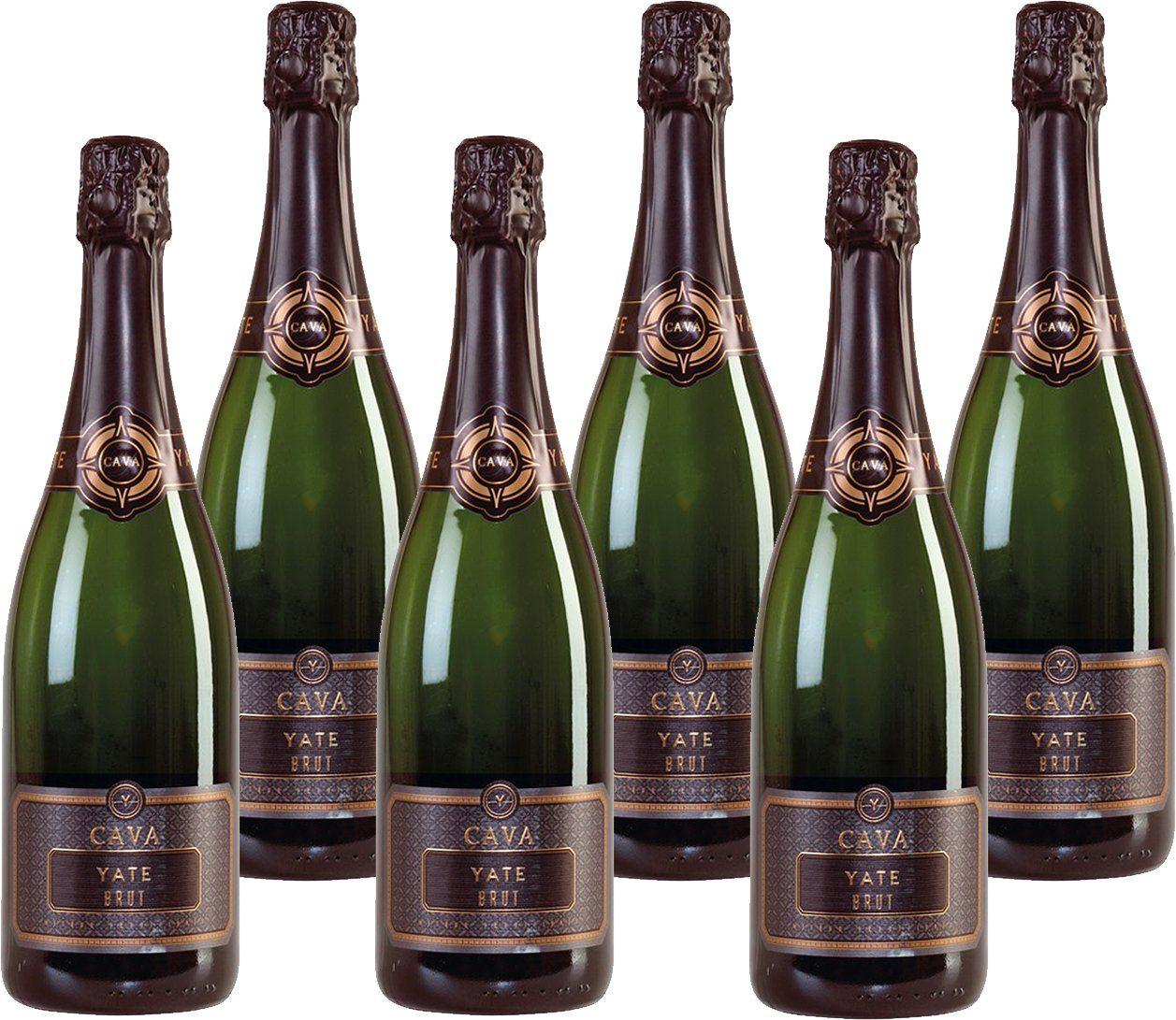 Weisswein aus Spanien, 11,5 Vol.-%, 4,5 l »NV Bodega Vallformosa«