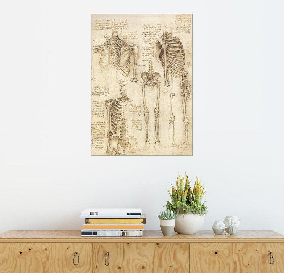 Posterlounge Wandbild - Leonardo da Vinci »Anatomie Studie, Skelett ...