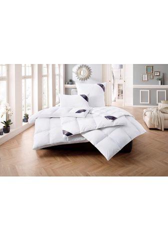 EXCELLENT Antklodė + pagalvė »Lugano« lengvai