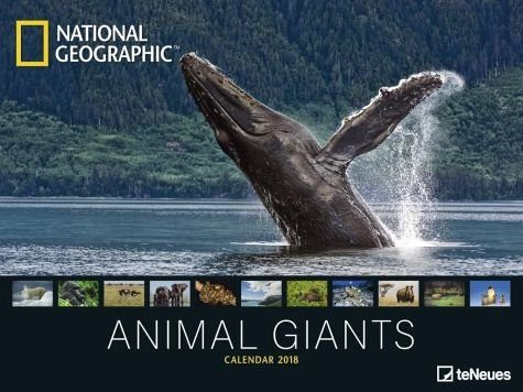 Kalender »National Geographic Animal Giants 2018«