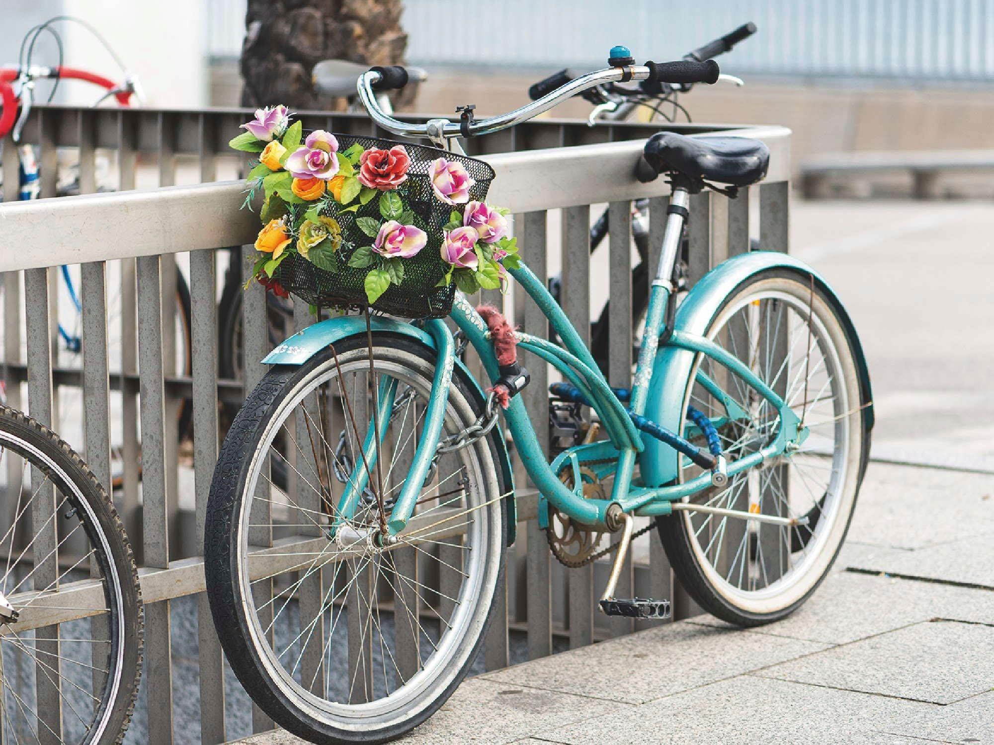 Kettenschutz Fahrrad Preisvergleich • Die besten Angebote online kaufen