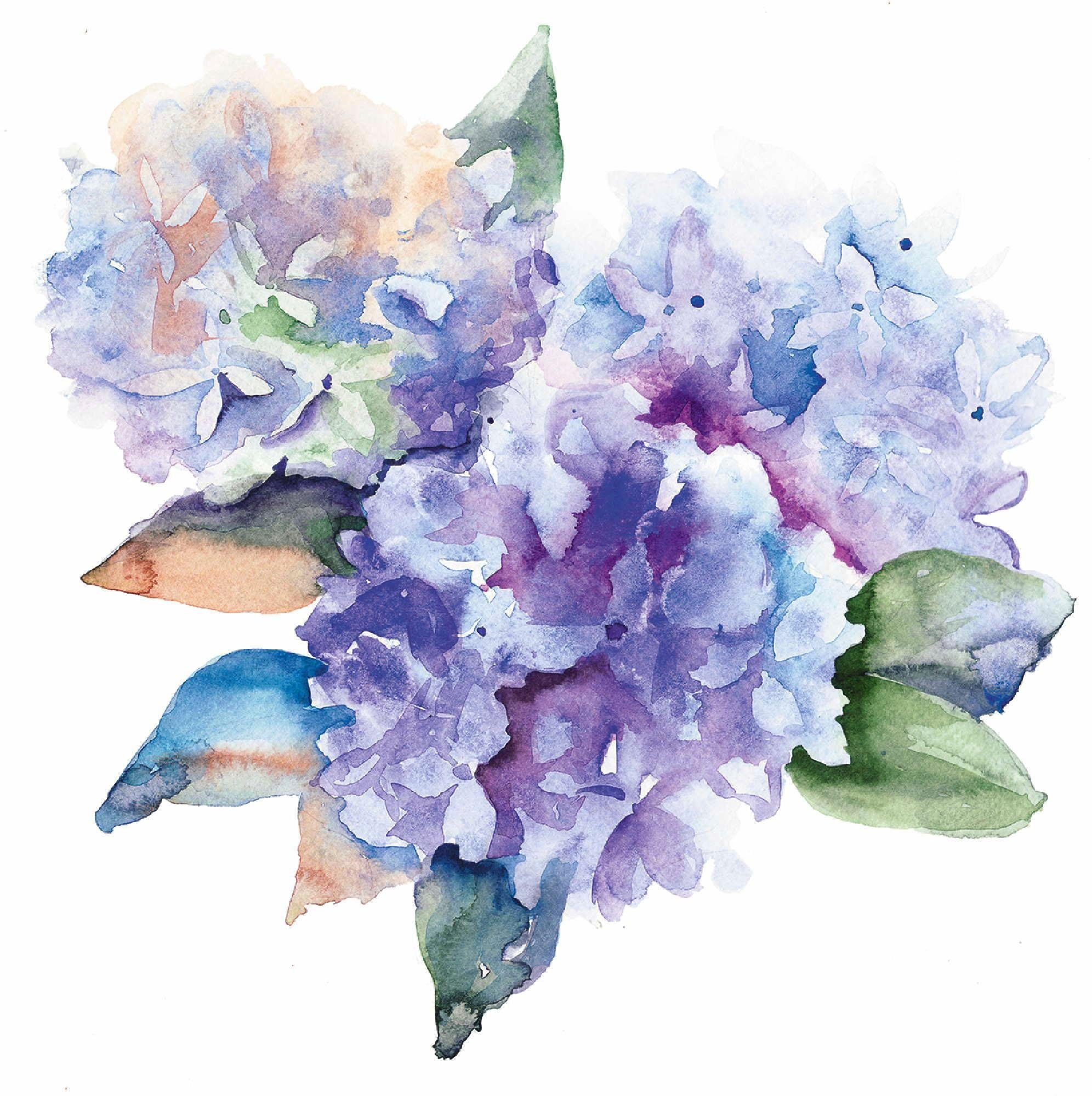 Home affaire Leinwandbild »Blaue Hortensien«, 60/60 cm