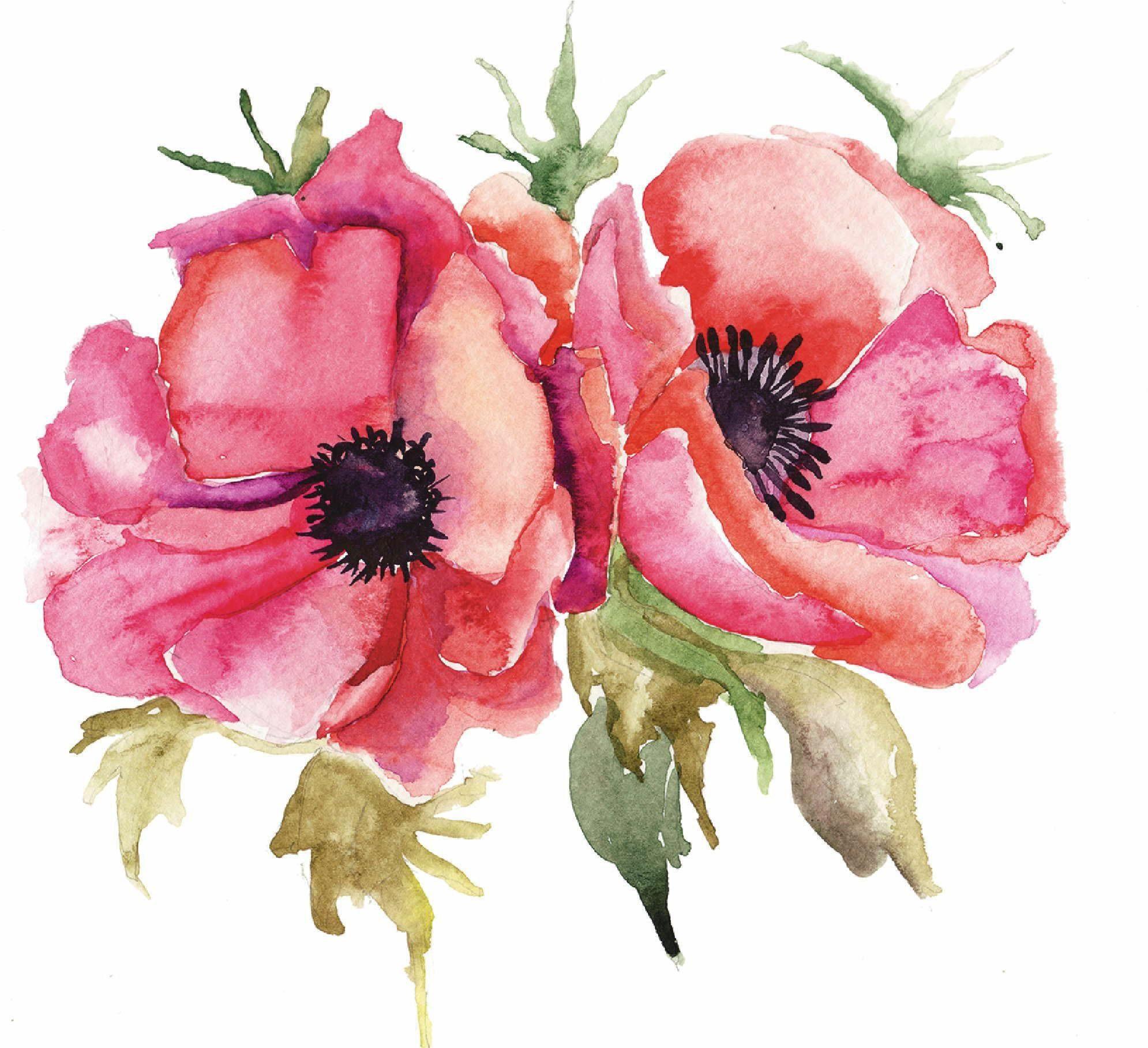 Home affaire Leinwandbild »Unknown: Stilisierte Mohnblumen-Illustration«, Blumen, 60/60 cm
