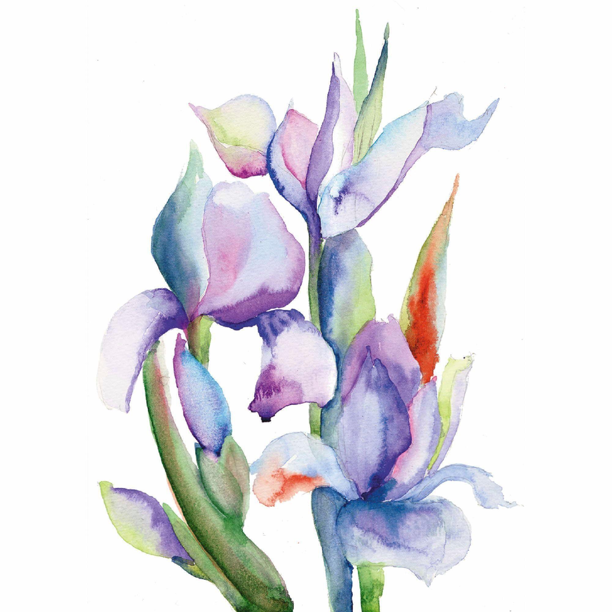 Home affaire Leinwandbild »Unknown: Iris«, 60/60 cm
