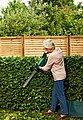 BOSCH Akku-Heckenschere »Easy HedgeCut 12-35«, 33 cm Schnittlänge, mit Akku und Ladegerät, Bild 2