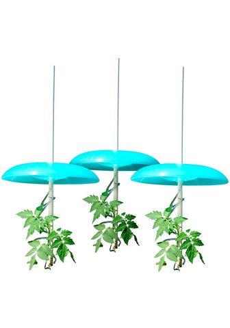 KHW Rinkinys: Apsauginis stogas augalams »...